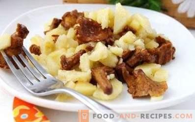 Krompir, prepražen s lisičkami v počasnem štedilniku